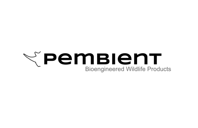 Pembient's company logo is a modern minimalist design