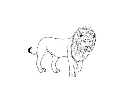 lion_small_display